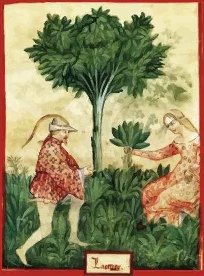 botanical medieval horticultural