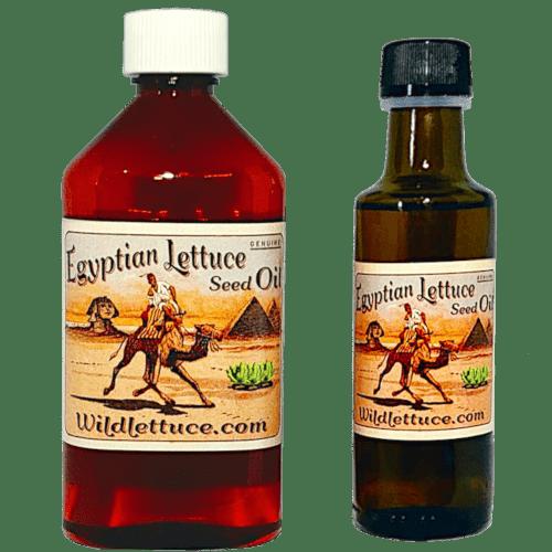 lettuce seed oil