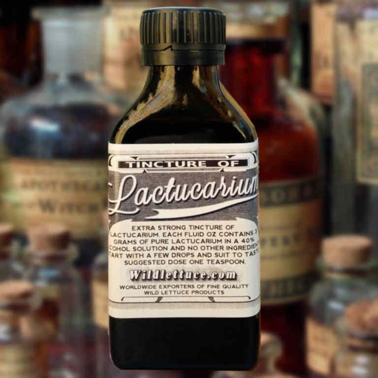 tincture of lactucarium